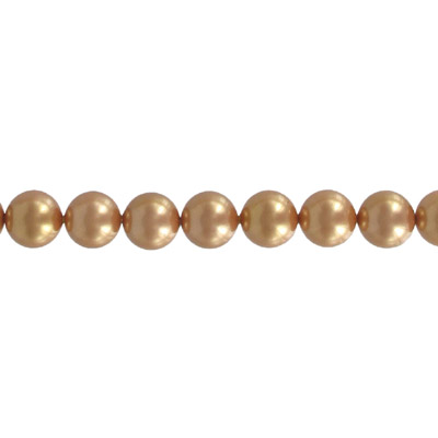 Simulated pearl shell, champagne