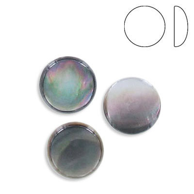 Cabochon, 10mm, low dome, round, black lip shell