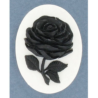 Cameo black rose on white background